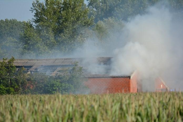 Zware brand vernielt stal vol stro gedeeltelijk, maar alle varkens gered