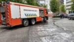 Kilometers lang oliespoor kronkelt door Roeselare