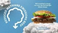 "Burger King maakt hamburger van ""propere koeien"""
