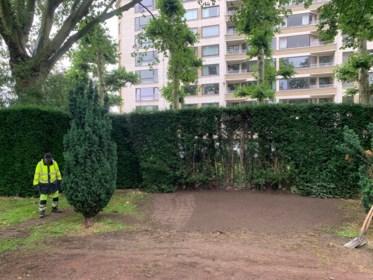Laatste sporen van Leopold II uitgewist: gras in de plaats