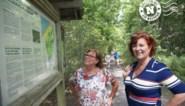 Groeten uit: het Duinbos in De Haan
