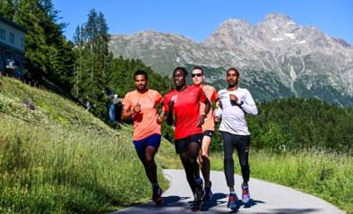 Belgische delegatie bereidt wereldrecord en Olympische Spelen voor in het walhalla voor langeafstandslopers