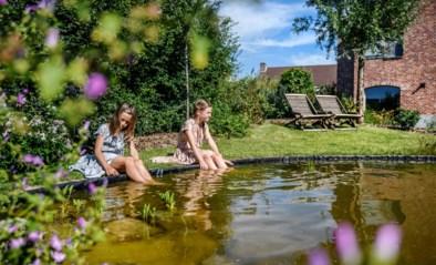 Wild, maar niet verwilderd: wij keken over de haag van een op en top natuurlijke tuin