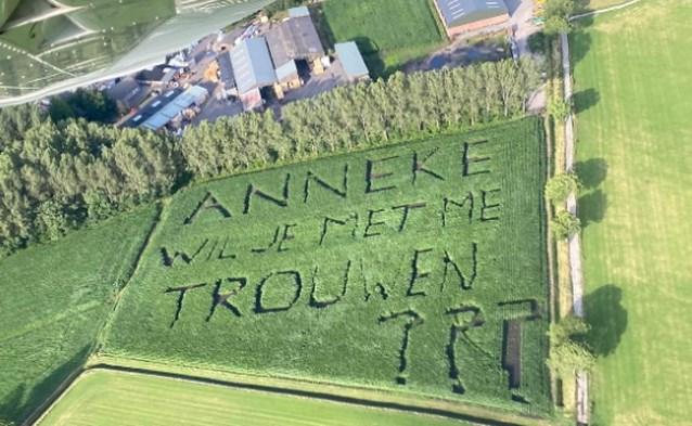 """Creatieveling zaait huwelijksaanzoek in maïs: """"Gelukkig zei Anneke ja"""""""