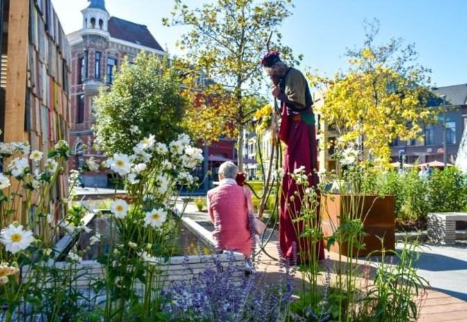 Grijs Werfplein wordt in september een groene oase