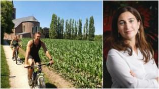 """Nieuwe 'vijftigmeterregel' zou bouwstop in Merelbeke """"onbetaalbaar"""" maken"""