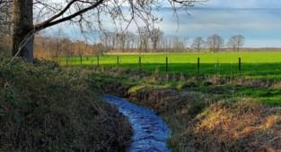 Natuurbeheersplan voor Vallei van het Merkske