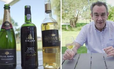Wijn gemaakt van rotte druiven? Onze wijnexpert Alain Bloeykens legt het verschil uit tussen mousserende, versterkte en likoreuze wijn