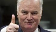Proces in beroep van Mladic voor eind augustus