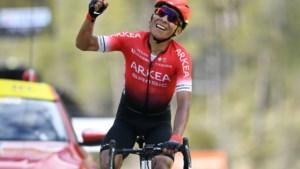 Van treurwilg tot speelvogel: waarom zijn overstap naar Arkéa-Samsic Nairo Quintana winst in grote ronde kan opleveren