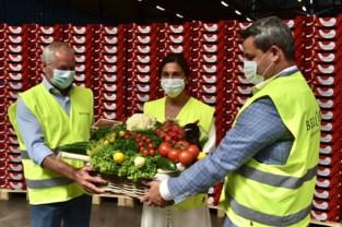 Nieuwe wasserij bij veiling BelOrta gaat jaarlijks 65 miljoen groene klapkisten proper maken