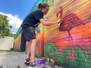 Graffitikunstenaar ziet Tomorrowland wegvallen, dan maar flamingo's in De Ster