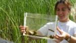 Minister Demir trekt laarzen aan om amfibierijk natuurgebied te bezoeken