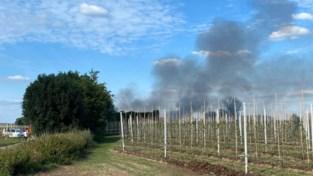 Beperkte asbestvervuiling na loodsbrand in Wijer
