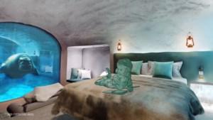 Pairi Daiza onthult eerste beelden van 'onderwaterkamers' met zicht op ijsberen, walrussen en pinguïns