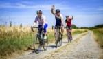 Provincie lanceert virtuele fietschallenge met echte prijzen