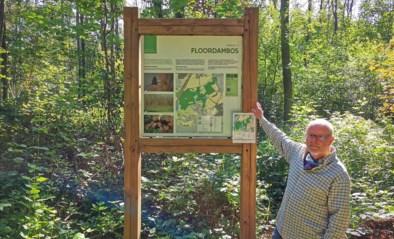 """Op ontdekking in pas erkend natuurgebied Floordambos-Peutiebos: """"Dit is een baken tegen de verstedelijking"""""""