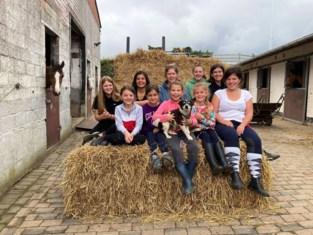 Spelenderwijs leren paardrijden in manege Steenberg
