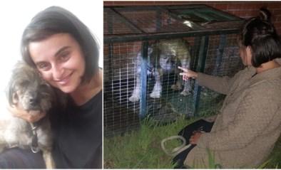 """Baasje Roxana herenigd met hond Scooby na dwaaltocht van twee weken en meer dan vijftig kilometer: """"Het waren bange dagen"""""""