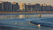 """De """"overrompeling"""" aan de kust: nog nooit zoveel flats aan zee verkocht"""