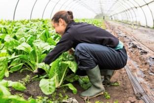 Lokale investeerders bouwen aan toekomst van bioboerderij De Wassende Maan