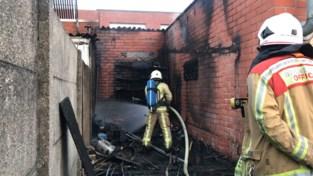 Hitte doet tuinhuis in vlammen opgaan