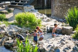 Warmste dag van het jaar: waterpret in de vistrap