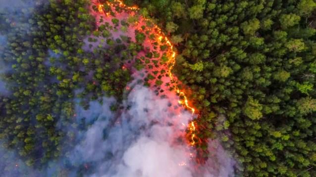 Giftig rookgordijn over Siberische stad door zware bosbranden