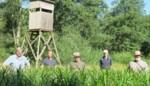 """Natuurpunt verwerft 74 hectare bos: """"Goede hoop dat zelfs otter in antitankgracht zal opduiken"""""""