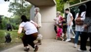 Drie medewerkers Zoo Antwerpen testen positief op corona