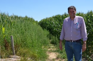 """Brakel verlegt buurtweg nr. 70 naar Zottegems grondgebied: """"Om niet door de akkers van de boeren te moeten"""""""