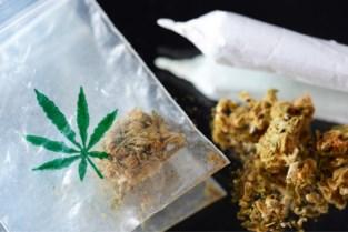 Twee arrestaties na vondst van cannabisplantage in Hoogstraten
