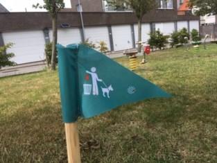 Vlaggetjes tegen hondenpoep