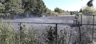 Grasbrand zorgt voor rookhinder in Lommel