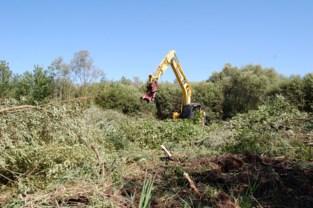 Dankzij deze werken is het beter leven in de Polders voor de woudaap