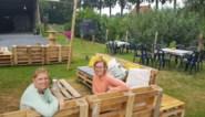 Zomerbar 't Hof, een wild idee van twee zotte dozen
