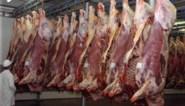 Alweer grote besmetting in vleesverwerkend bedrijf: is het vlees op ons bord nog veilig?