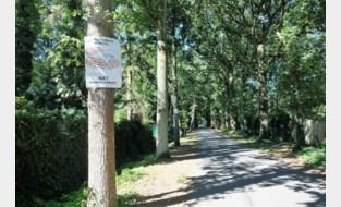 """Protest tegen gewijzigde bouwvoorschriften Kapellenbos-Oost: """"We willen het groen juist zo veel mogelijk bewaren"""""""