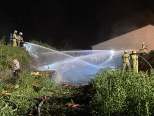 Man bezweken aan verwondingen na ontploffing op akker in Merksplas