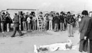 Wie vermoordde Pasolini? Het verhaal achter een van de grootste mysteries uit de Italiaanse geschiedenis