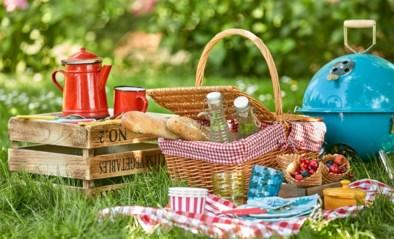 Coronavrij op de hei en wereldsmaken: tips voor een geslaagde picknick