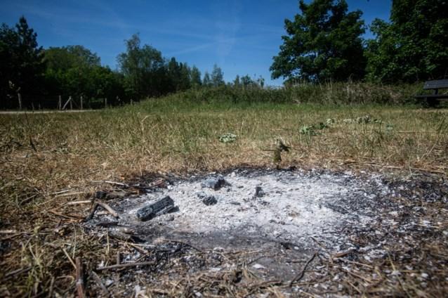 Kampvuurverbod uitgevaardigd in hele provincie Antwerpen, rookverbod in natuurgebieden