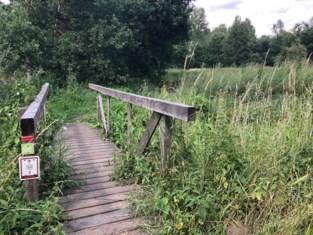 Dit weekend wandel of loop je door Haacht