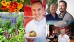 10 topchefs over hun favoriete bloemen: bij welke gerechten kan je ze gebruiken?