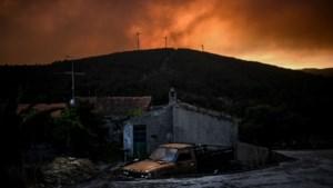 Blusvliegtuig crasht in Portugal bij bestrijding bosbranden