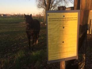 Plannen voor paardenkliniek Turkenhofdreef lijken definitief afgeschreven