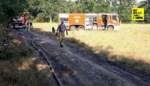 Op het nippertje: vijf korpsen kunnen brand in Lommel nét voor de bosrand stoppen