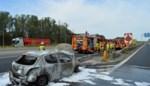 Trip richting kust strandt op E403 na autobrand