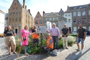 """UGent gaat op zoek naar kerk onder Sint-Jansplein: """"Zonder een schop in de grond te steken"""""""