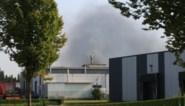 Korte maar felle brand in metaalbedrijf